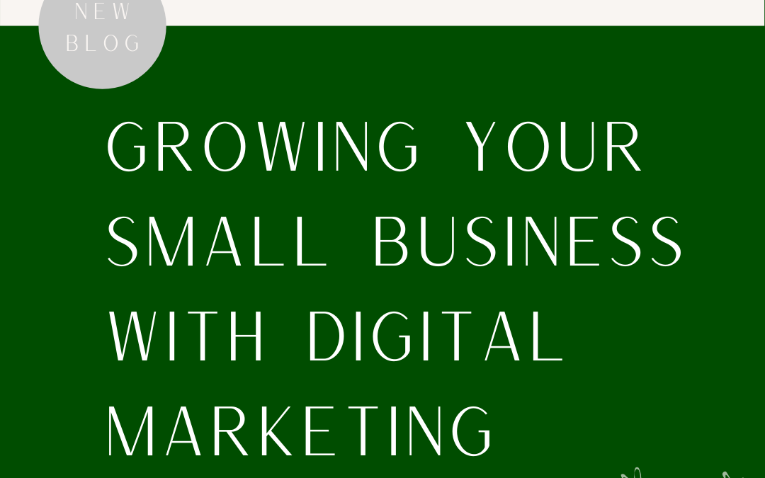 Growing Your Small Business With Digital Marketing Promotions